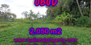 Land for sale in Ubud Bali, Magnificent view in Ubud Pejeng – TJUB344