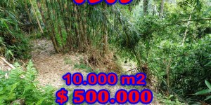 Land in Ubud for sale 100 Ares in Ubud Tegalalang Bali