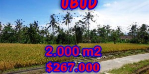 Land in Ubud Bali for sale, nice view in Ubud Tegalalang Bali – TJUB246