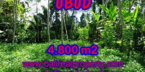 Property sale in Bali, Beautiful land in Ubud for sale – TJUB382