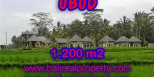 Land in Bali for sale, Stunning view in Ubud Bali – TJUB365