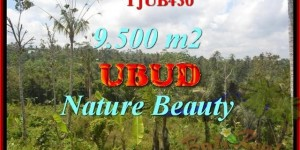 LAND IN Ubud Payangan FOR SALE TJUB430