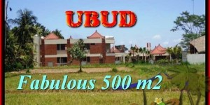 Magnificent PROPERTY 500 m2 LAND FOR SALE IN UBUD BALI TJUB435