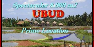 Beautiful 8.000 m2 LAND IN UBUD FOR SALE TJUB441