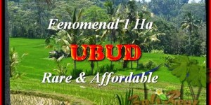 Affordable 10000 m2 LAND IN Ubud Pejeng FOR SALE TJUB456