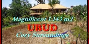 Exotic 1.143 m2 LAND FOR SALE IN Sentral Ubud TJUB460