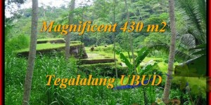 Beautiful PROPERTY LAND SALE IN Ubud Payangan BALI TJUB466