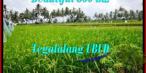 Exotic PROPERTY LAND SALE IN Ubud Tegalalang BALI TJUB482