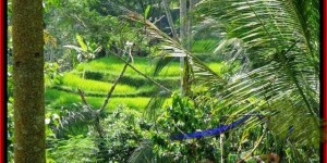 Magnificent LAND IN Ubud Tegalalang BALI FOR SALE TJUB495