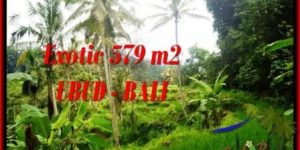 Exotic LAND SALE IN Ubud Tegalalang BALI TJUB538