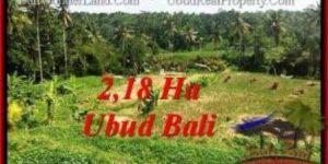 FOR SALE Affordable PROPERTY 21,800 m2 LAND IN UBUD BALI TJUB546