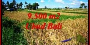 Affordable PROPERTY Sentral Ubud 9,500 m2 LAND FOR SALE TJUB548