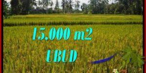FOR SALE 15,000 m2 LAND IN UBUD TJUB551