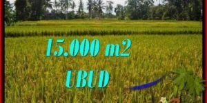 FOR SALE 15,000 m2 LAND IN UBUD TJUB551
