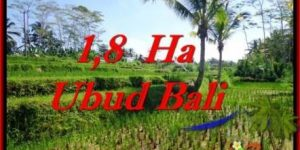 Magnificent PROPERTY 16,000 m2 LAND IN Ubud Payangan FOR SALE TJUB553