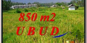 UBUD BALI 850 m2 LAND FOR SALE TJUB583