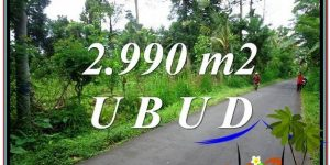 Magnificent PROPERTY LAND SALE IN UBUD TJUB591
