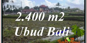 Affordable PROPERTY 2,400 m2 LAND FOR SALE IN Ubud Pejeng BALI TJUB620