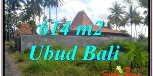 Magnificent PROPERTY LAND FOR SALE IN UBUD TJUB622