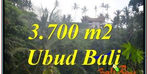 Exotic PROPERTY 3,700 m2 LAND IN UBUD FOR SALE TJUB640