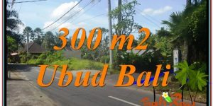 UBUD 300 m2 LAND FOR SALE TJUB646