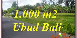 Exotic UBUD BALI 1,000 m2 LAND FOR SALE TJUB649
