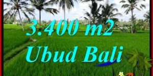 Affordable PROPERTY Ubud Pejeng BALI 3,400 m2 LAND FOR SALE TJUB656
