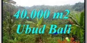 LAND SALE IN UBUD TJUB679