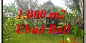 Affordable SENTRAL UBUD BALI 1,000 m2 LAND FOR SALE TJUB680