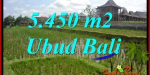 FOR sale Exotic Land in Sentral Ubud Bali TJUB688