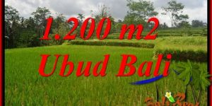 Exotic Property Land in Ubud Bali for sale TJUB693