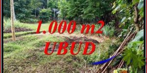 Affordable Land for sale in Ubud Bali TJUB712