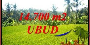 Beautiful Property Land in Ubud Bali for sale TJUB717