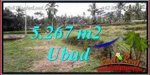 Exotic Land in Ubud for sale TJUB743