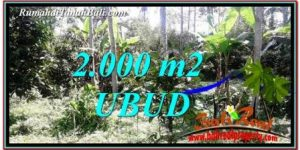 Magnificent PROPERTY Ubud Tegalalang 2,000 m2 LAND FOR SALE TJUB747
