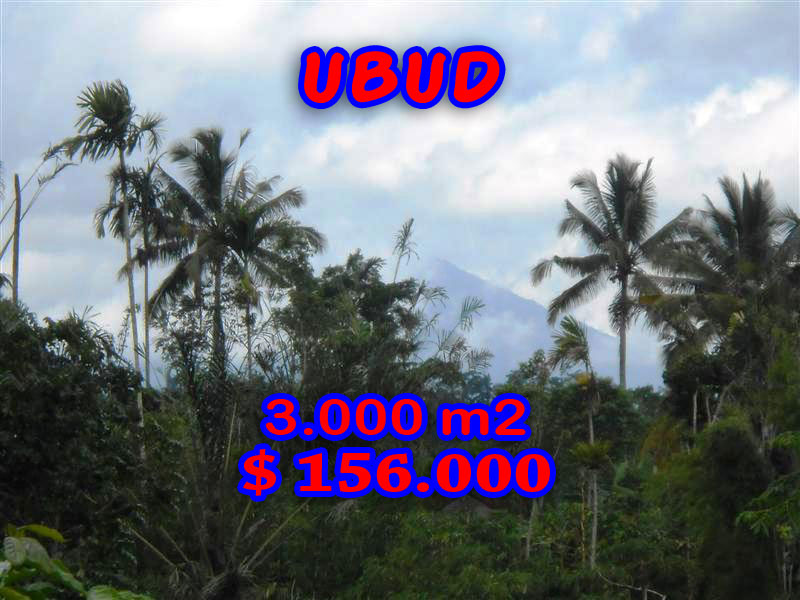 Land in Ubud Bali For sale 3.000 m2 Stunning By the river valley