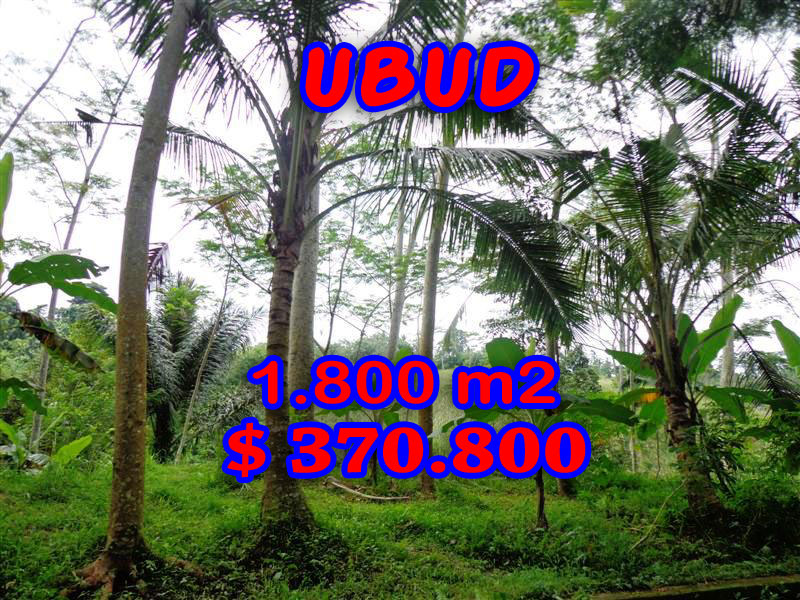 Land for sale in Ubud Bali 1.800 sqm in Ubud Tegalalang