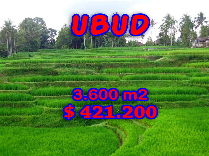 Land in Ubud for sale 36 Ares with River side