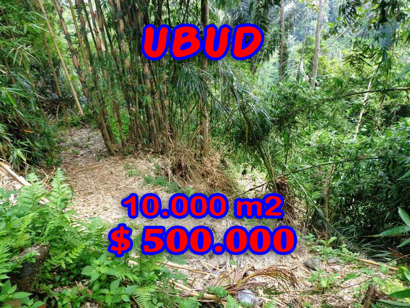 Land for sale in Bali 10.000 sqm by the river valley in Ubud Tegalalang