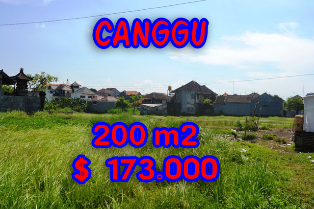 MagnificentLand for sale in Bali, Rice fields view in canggu brawa Bali – TJCG109