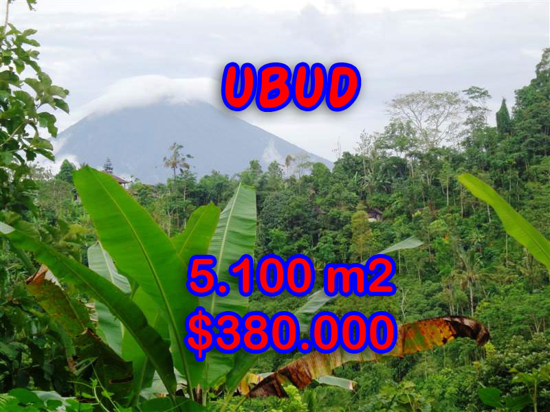 Land for sale in Bali, exceptional view in Ubud Tegalalang – TJUB249