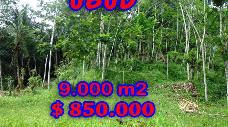 Property for sale in Ubud land