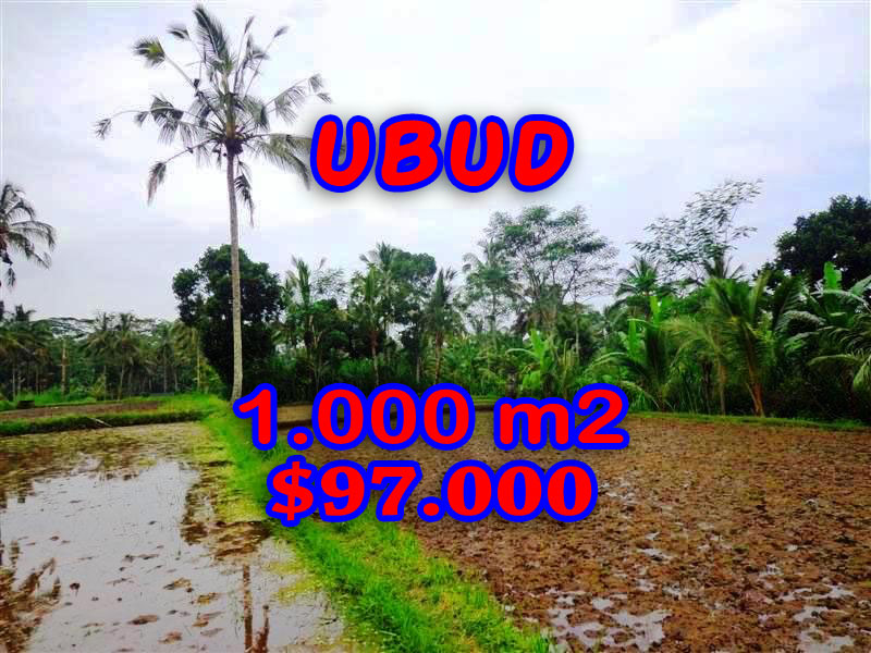 Land for sale in Bali, spectacular view in Ubud Bali – TJUB255