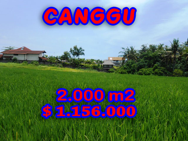 Land in Bali for sale, fantastic view in Canggu Bali – TJCG093