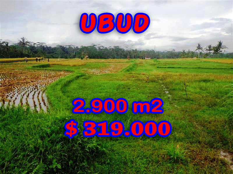 Astonishing Property in Bali, Land in Ubud Bali for sale – TJUB253