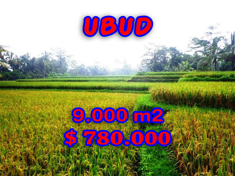 Property in Bali for sale, Spectacular land for sale in Ubud Bali  – 9.000 sqm @ $ 87