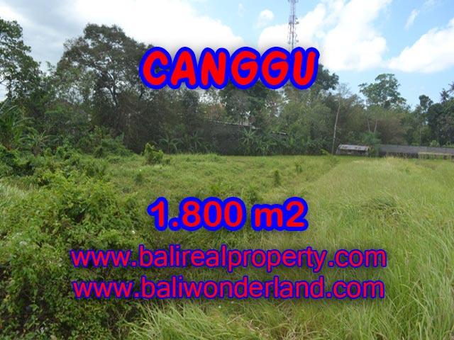 Land for sale in Canggu Batu Bolong, Magnificent Property in Bali  – 1,800 sqm @ $ 594