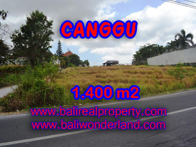 Amazing Property in Bali, Land for sale in Canggu Bali – TJCG123