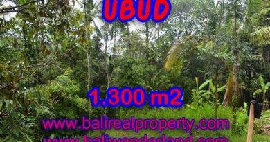 Amazing Land in Bali for sale in Ubud Pejeng Bali – TJUB362