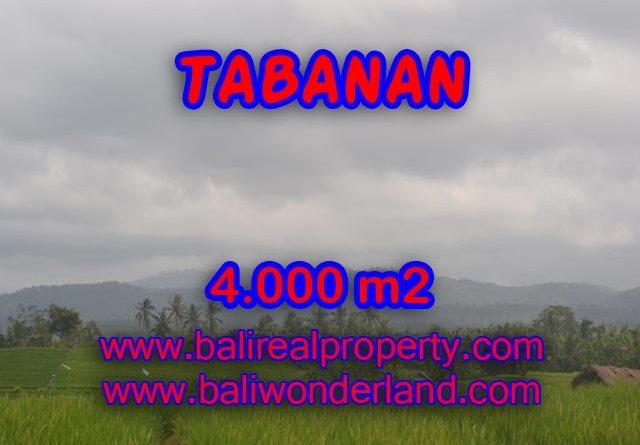 Land in Bali for sale, Terrific view in TABANAN BARAT – TJTB084